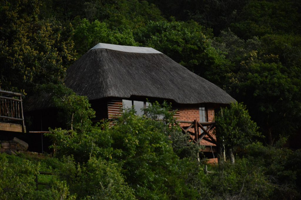 pvt hunting safaris chalet