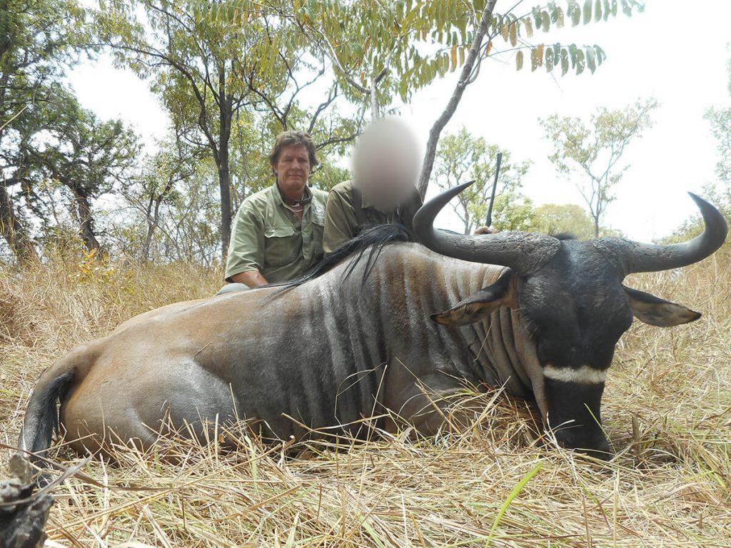 Nyassaland wildebeest hunting