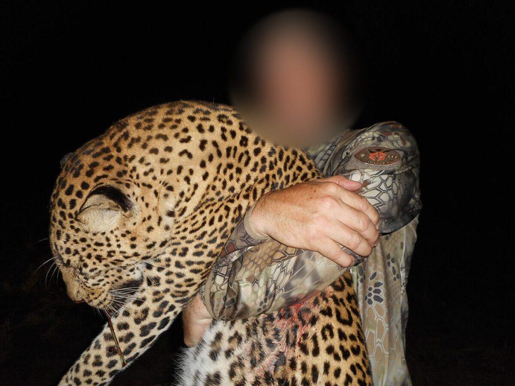 big cat hunting in africa