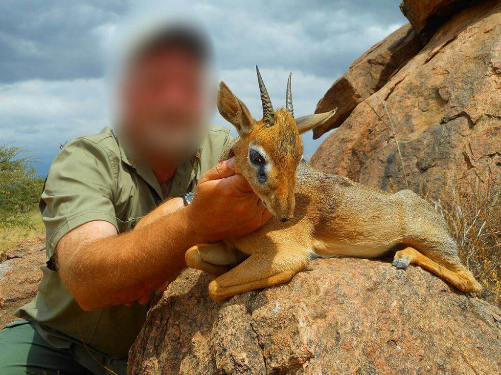 dik dik hunting