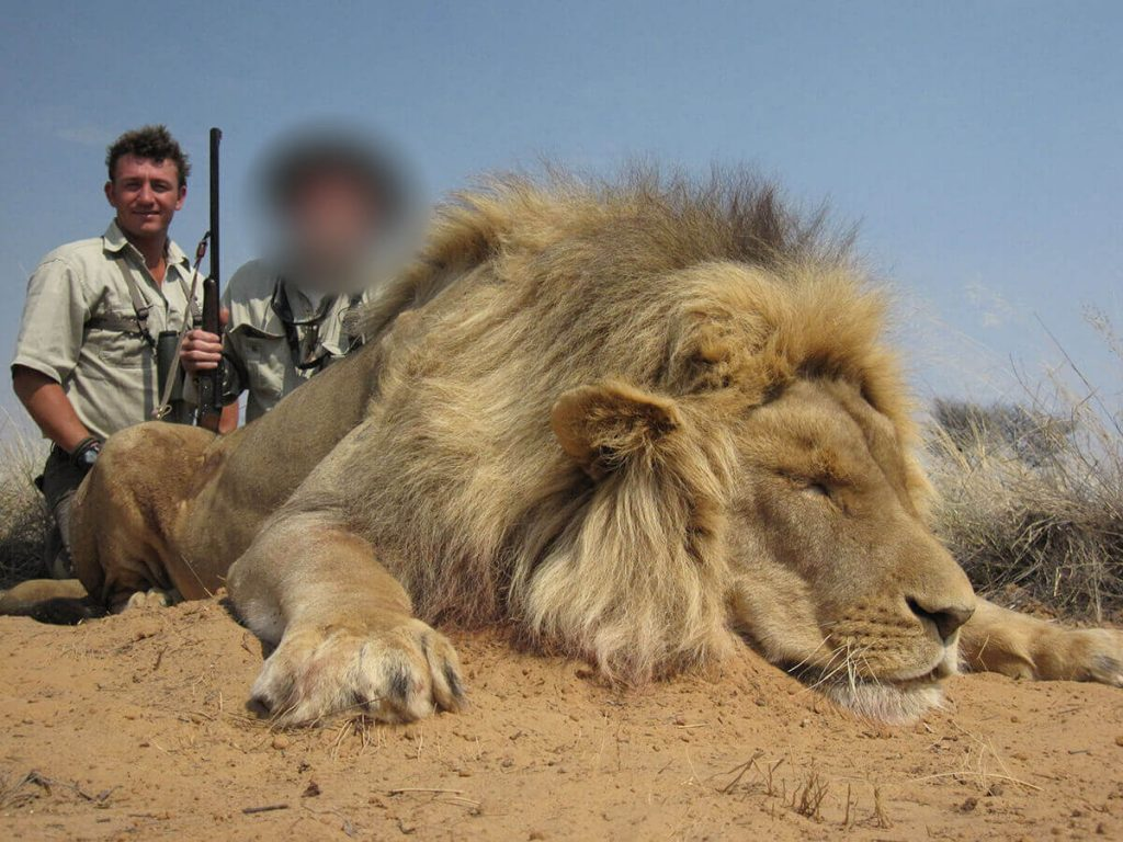 lion-hunting-packages-in-south-africa