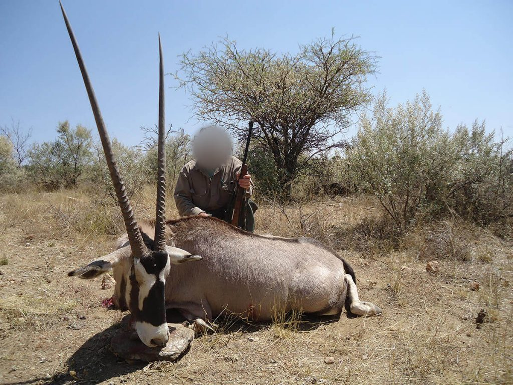 plainsgame-hunting-safaris-in-namibia