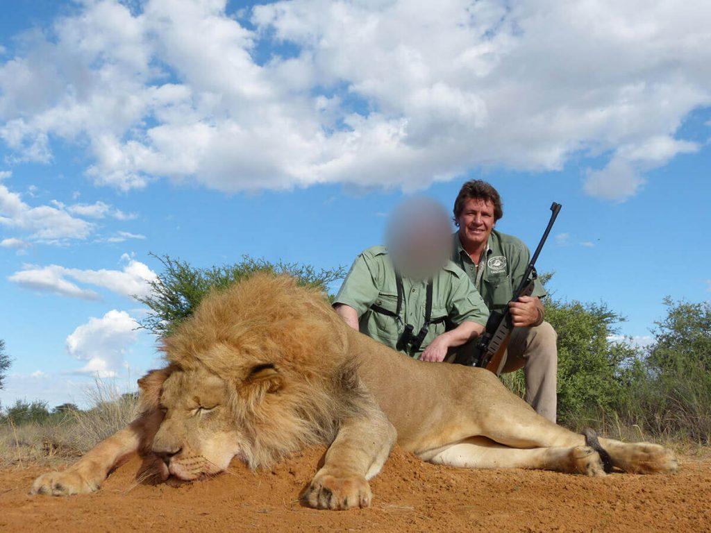 trophy-lion-hunting-safaris